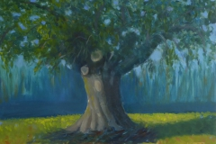 Carob tree; 30/40 cm; olieverf op paneel